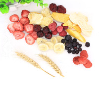 TTN Wholesale Healthy Snacks Freeze Dried Food Price List