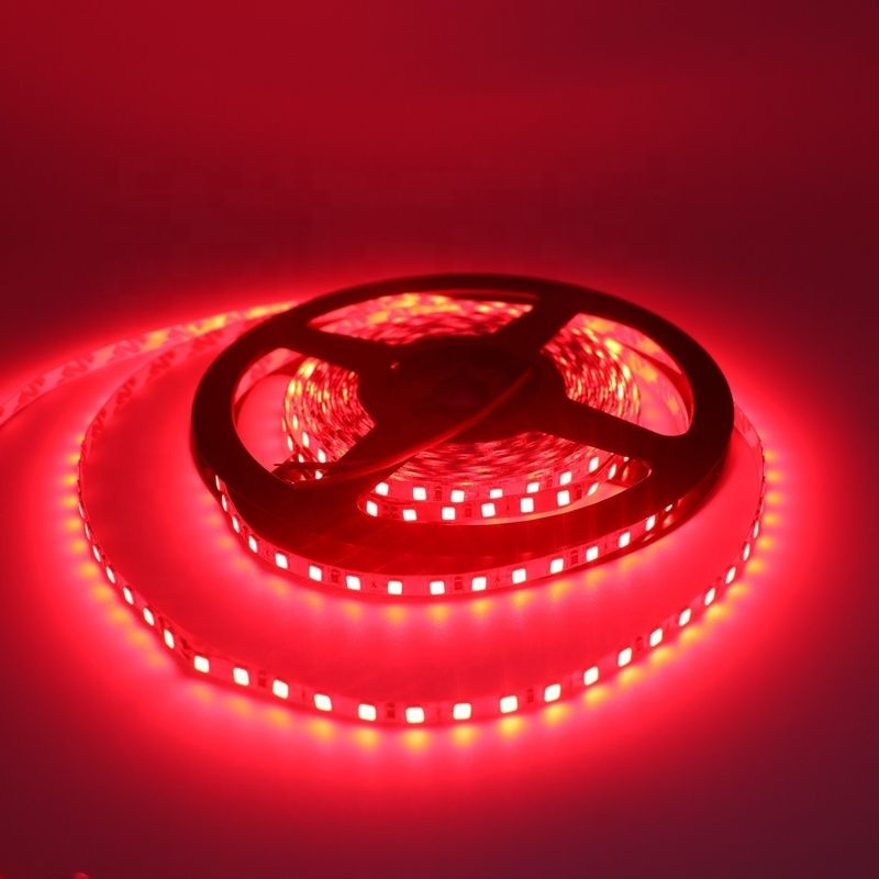 High quality 220V 24V colors flexible neon <strong>led</strong> strip light