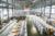 80ton aluminum die casting machine with price