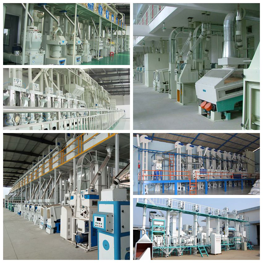 Rice Packaging Machine Packaging Scale Packing Scale Packing Machine