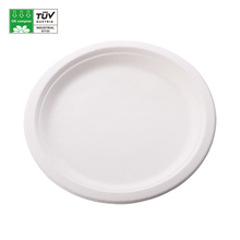 Compostable Sugarcane Pulp Bagasse Tableware Biodegradable <strong>Plate</strong>