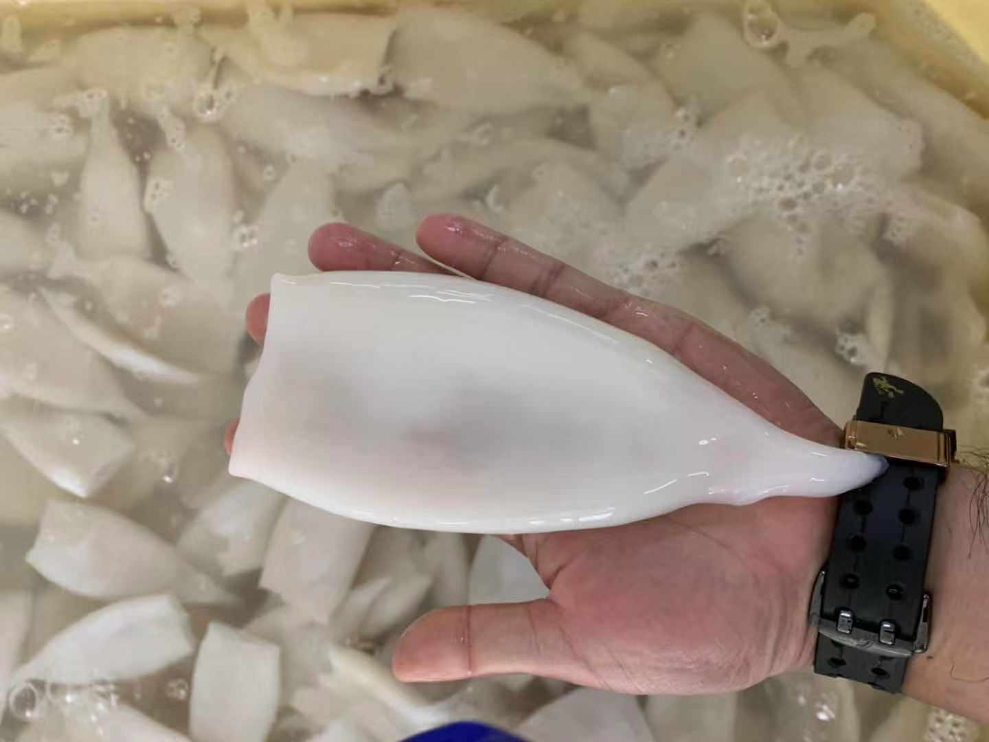 Frozen flower Squid