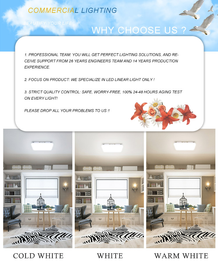 IP65 High Quality Modern Hotel Lobby Reception Room Dali Dimming 20w 30w 40w Square LED Ceiling Lights