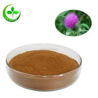 Natural milk thistle extract, silybum marianum extract powder Silymarin 80%
