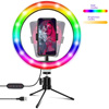 /product-detail/goldmore-camera-beauty-rgb-10inch-selfie-ring-light-tiktok-youtube-with-dest-tripod-stand-phone-holder-best-ring-light-for-zoom-1600101257495.html