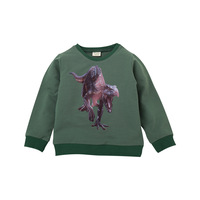 China Products Cheap Kids Boy Sport Windproof Hoodies Sweatshirt With Dinosaur