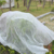 plant cover  plant protection cover/non woven protection cover/crop cover/UV treatment pp spunbonded