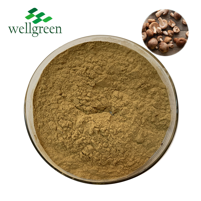 Wellgreen Shiitake Mushroom Extract Ahcc <strong>Powder</strong> for Improving the body's immune function in bluk