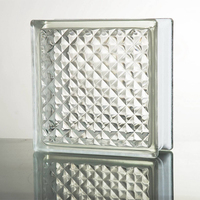 Glass Bricks Frosted For Decoration Blocks For Wall Glass Blocks Decorative Brick