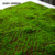 Cheap Factory Price Artifical Moss Mat Wall for home garden decoration ground decoration