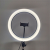 /product-detail/3000k-6000k-12-inch-led-ring-light-circle-ringlights-with-2m-tripod-stand-and-stand-cell-phone-holder-1600055610547.html