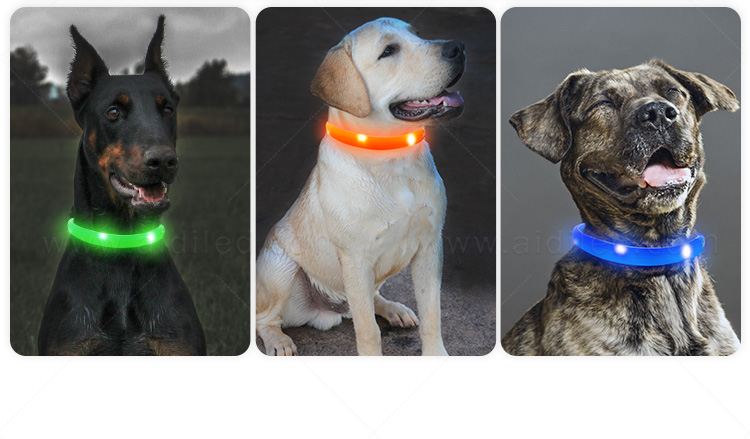 Waterproof Led Silicone Dog Collar with USB Rechargeable Battery Free Size Flashing Dog Collar Manufacturer