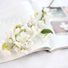 Long lasting flowers valentine gifts wholesale <strong>sakura</strong>