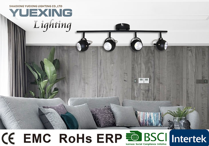 Wholesale Products SMD LED 2x5W Modern  Ceiling Chandelier Spot Light
