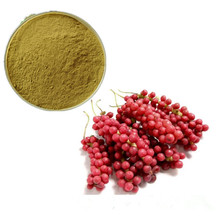 Nature Plant Extract Chinese Schisandra Chinensis Powder/ Wu wei zi Extract 9% Total Schizandrins