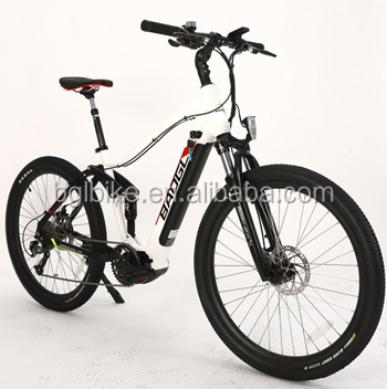 36V 48V 250W 350W 500W Mid Motor Mountain City E-Bike with Hidden Battery