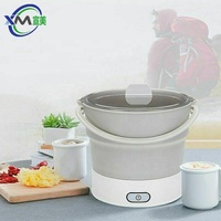 Food Grade Silicone Travel Collapsible hot pot cooker Dual Voltage 100V-240V Easy Storage 0.6L Capacity mini kettle