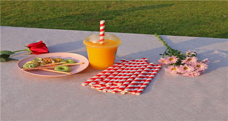 Wholesale Natural Safe Disposable 100% Biodegradable paper straws