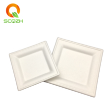 U01 Hot sale small paper bulk <strong>plate</strong> trays dessert tray sugarcane pulp white rectangle cake <strong>plates</strong>