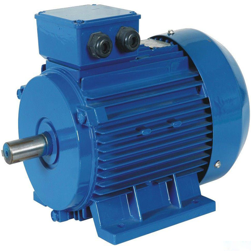 Three Phase Induction AC <strong>motor</strong>, 6 pole,<strong>Y2</strong>-315L1-6 110KW