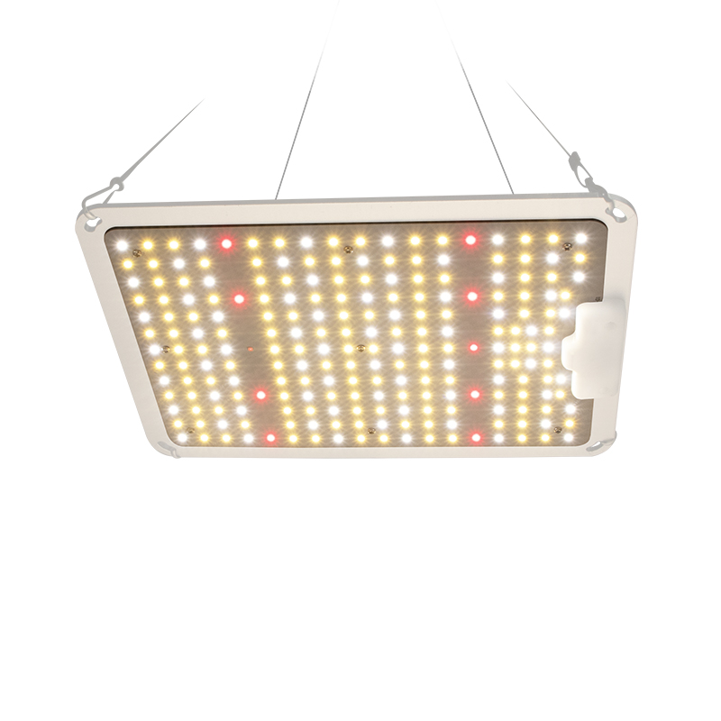 High PPE 2.7umol/<strong>J</strong> LED Grow Light 110W Quantum Board LED Grow Light For Indoor Plants growing