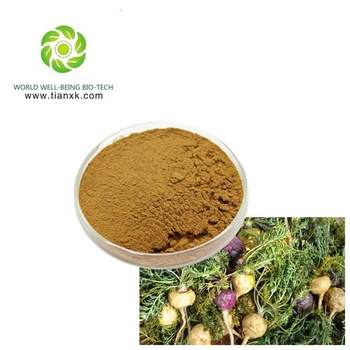plant extract manufacturing plant supply maca extract powder 10:1