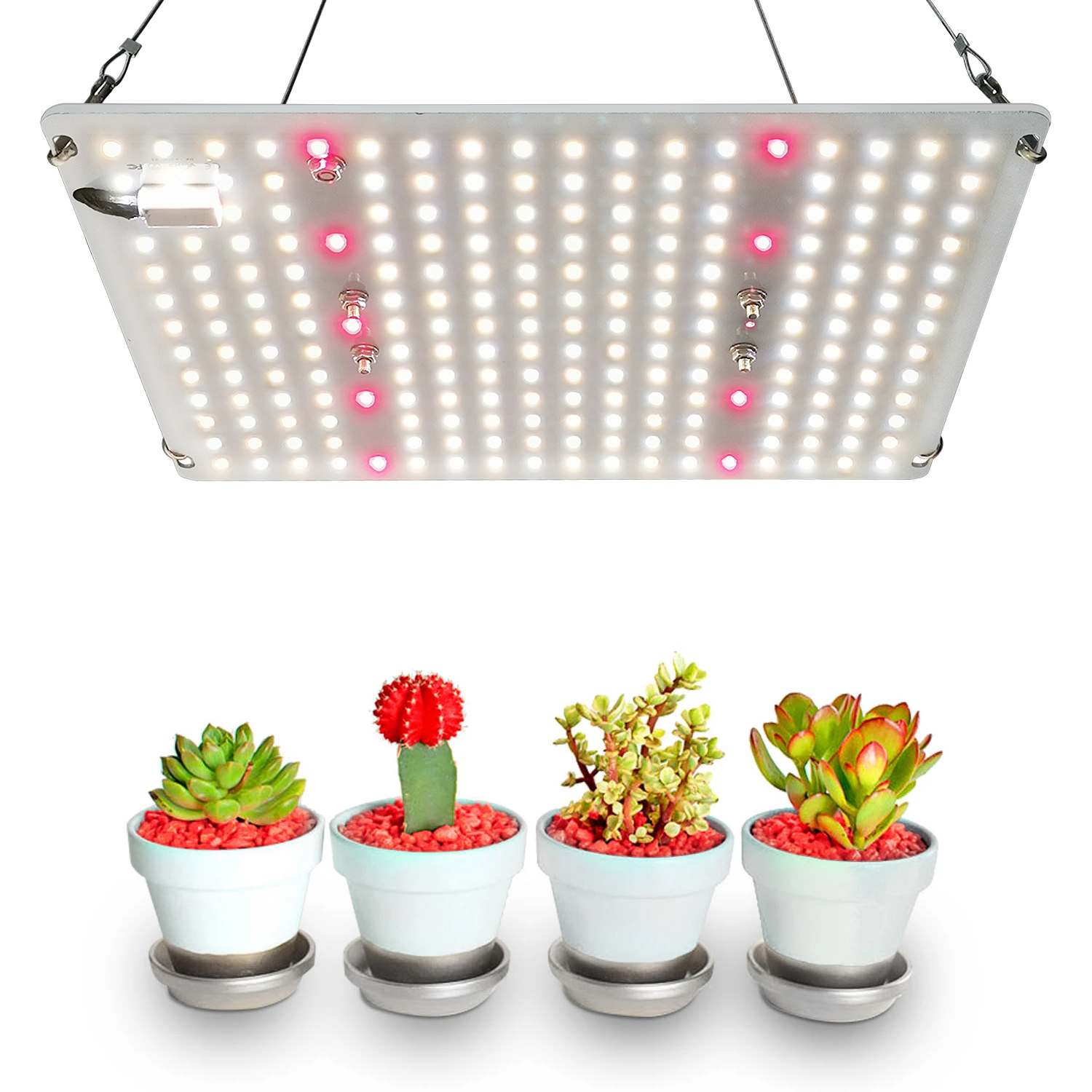 2020 2.7umol/<strong>J</strong> new launch hlg600 XLG240 quantum 600W 300w 260w 100 Watt <strong>220</strong> Watt for sf1000 sf 1000 sf-1000 Indoor Plants