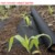 Biodegradable PP nonwoven fabric for horticulture black PP weedmat