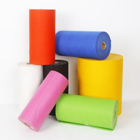 100% Polypropylene Material and Spunbonded Nonwoven Technics TNT non woven fabric