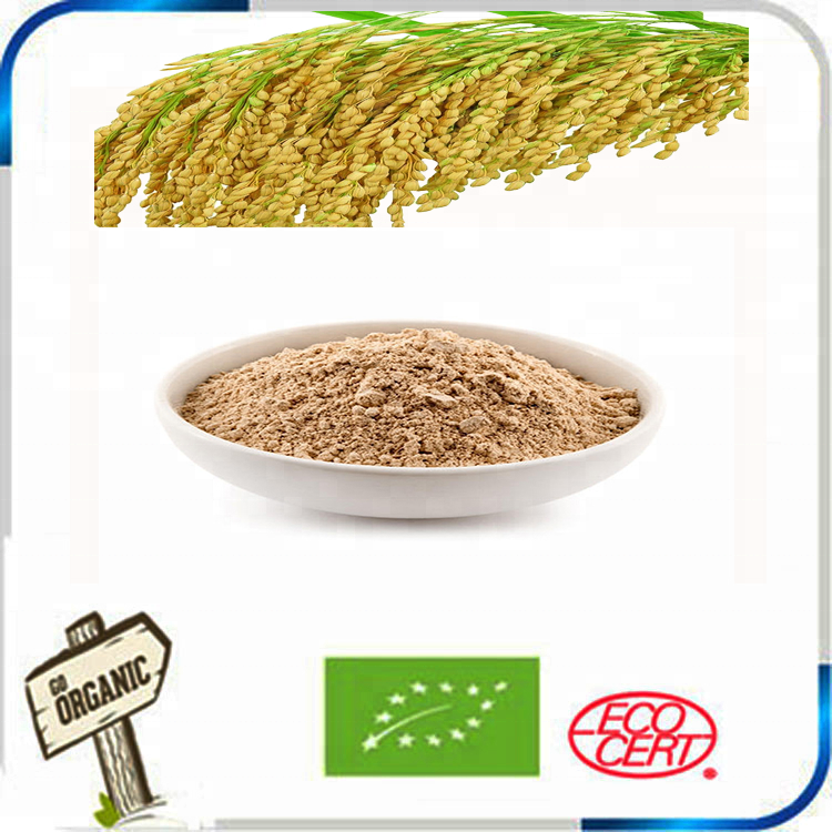 American European GNC factory supplier Brown <strong>Rice</strong> Protein 80% 300 Mesh superfine