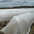 ground cover mats PP Non Woven plant cover Fabric,  mulch film