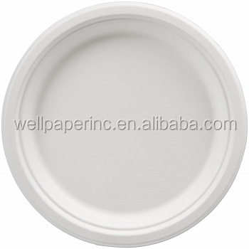Diameter 6-9 inch Campus white  plate for food healthy eco-friendly paper plate