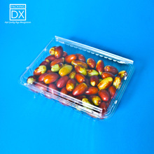 500G Fruit PET Packaging <strong>Container</strong> Clear Fruit Clamshell Tray