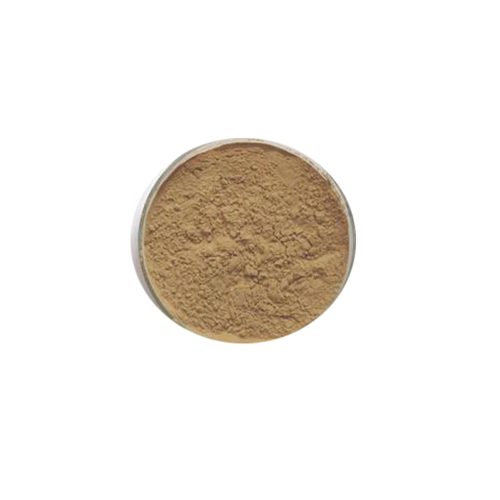 <strong>Natural</strong> Saw Palmetto Extract powder 10:1 Saw Palmetto P.E.