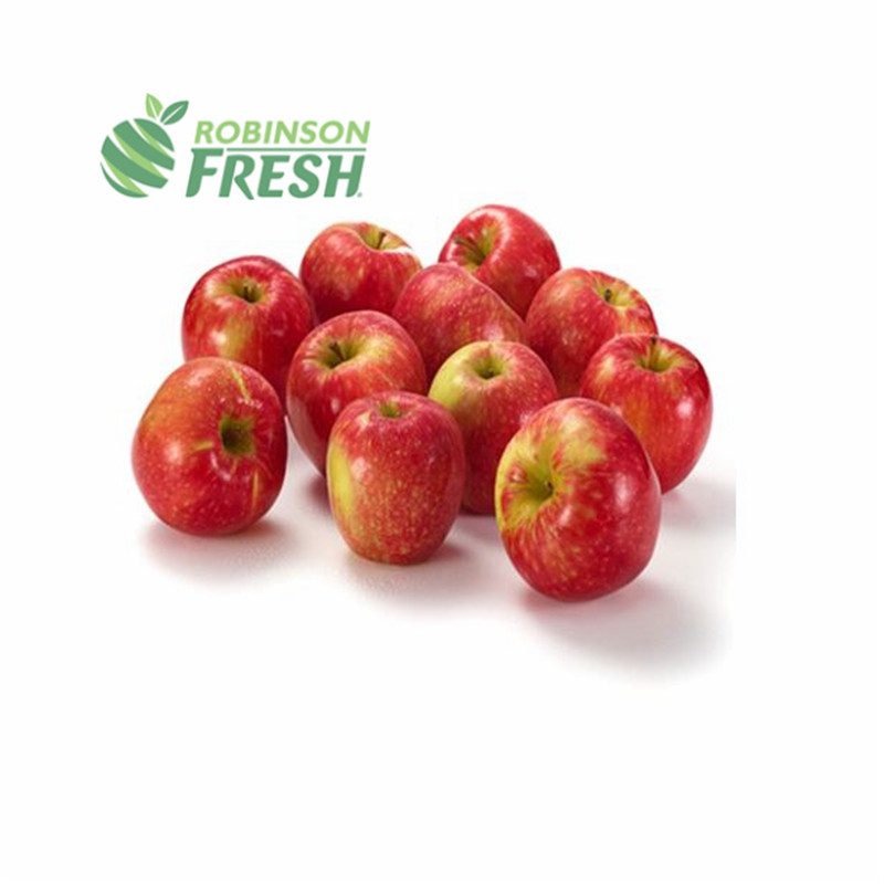 US Grown Fruit <strong>Apple</strong> HONEYCRISP <strong>Apple</strong> Robinson Fresh MOQ 72-88 Count Quick Delivery in US