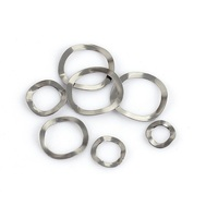 free sample supply stainless steel 304/316 wave spring lock washer