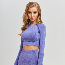 Wholesale Womens Fitness Crop Tops Seamless Yoga Top Long Sleeves Women Activewear Comfort <strong>Sport</strong> Tops