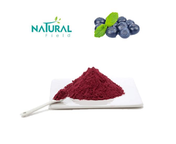 Factory Supply <strong>Natural</strong> wild harvested blueberry extract powder