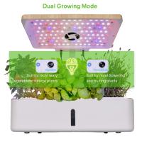 2020 Creative mini smart garden for plants indoor Smart garden hydroponic flower planter Home Garden Flower Pots with Led Light