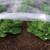 Hydrophilic agriculture film pp non woven fabric landscape mulch film