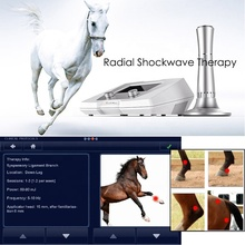 Equine Veterinary use BS-SWT2X Shock Wave Therapy <strong>Equipment</strong> treat horse navicular syndrome