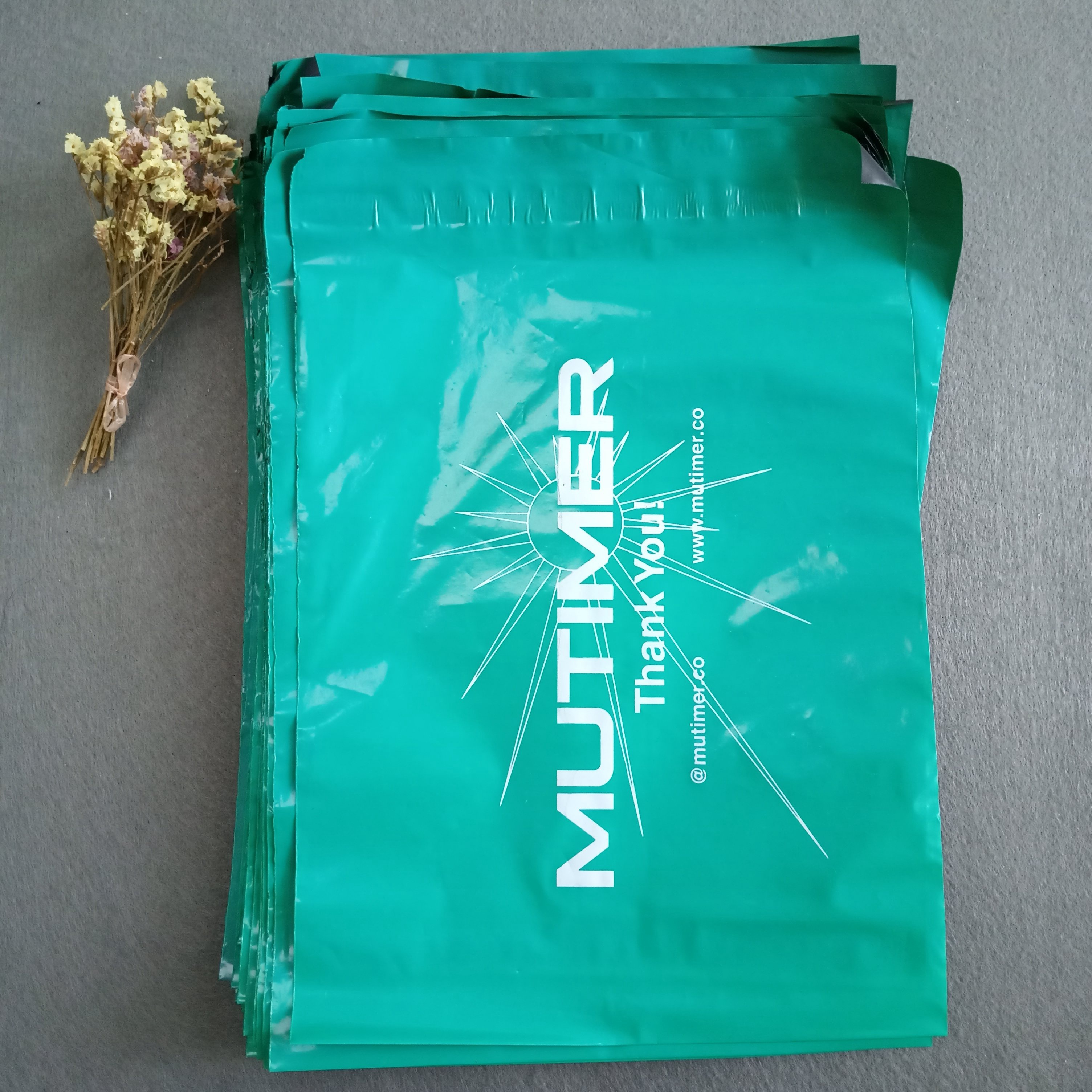 Biodegradable custom logo printed plastic <strong>poly</strong> mailing express bag