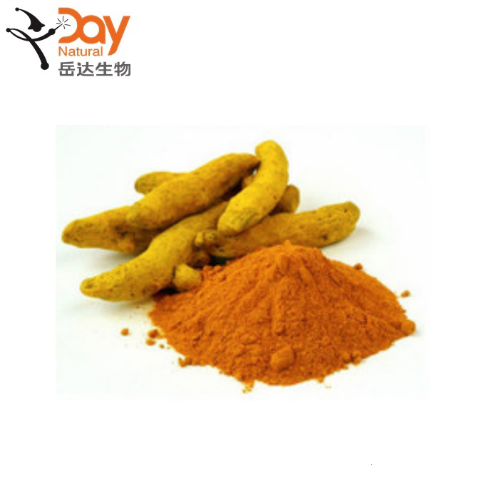 High Quality natural dried turmeric <strong>10</strong>% 20% 95% curcumin powder