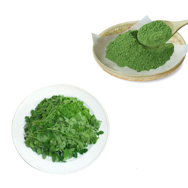 100% Pure Nature Moringa Leaf <strong>Powder</strong> For Buyers