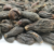 Xi qing guo Manufacturer supply natural dried western olive/fructus terminaliae immaturus