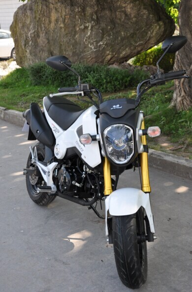 Chongqing Moto 125cc manual Motorcycle, MSX125 GROM MONKEY BIKE