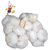 /product-detail/hot-sale-natural-fresh-white-garlic-10kg-box-62088247906.html