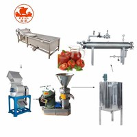 Small Tomato Paste Making Machine Production Line /Tomato Sauce Making Machine Processing Machine Price