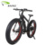 Best Price Aluminum Alloy Frame Fat E bike for Beach Electric Bicycle from China Electric Bike