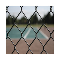 Garden decoration 6ft height blue vinyl coated chain link fence